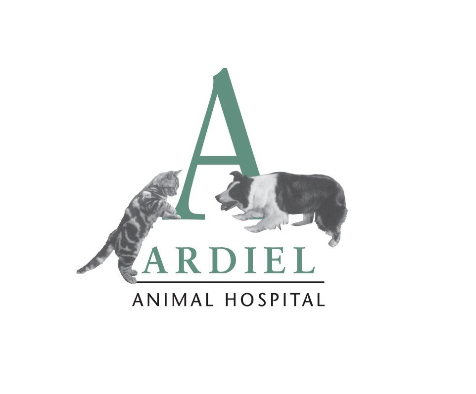 Ardiel Animal Hospital logo